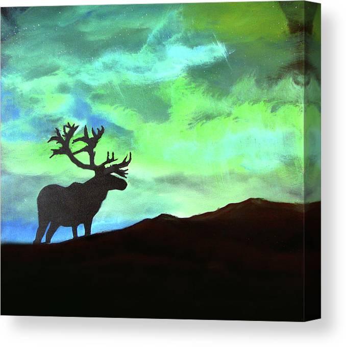 buck-in-the-northern-lights-john-morris-canvas-print