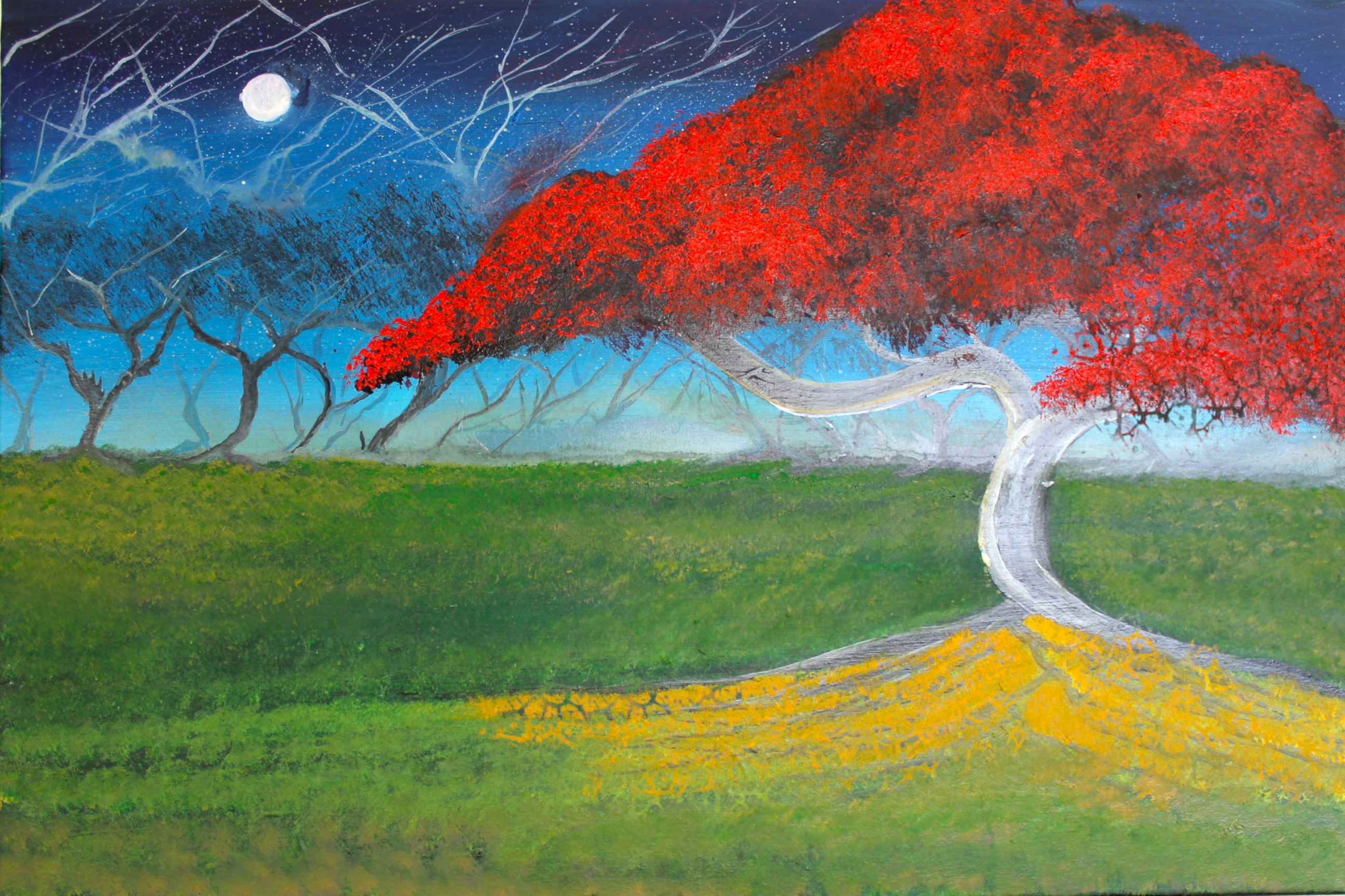 The Red Blossom Tree 2021